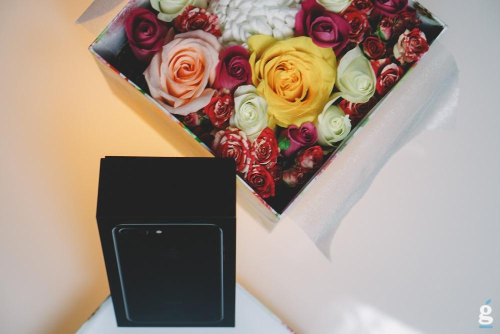 статьи цветы розы айфон подарки фото держится березку
