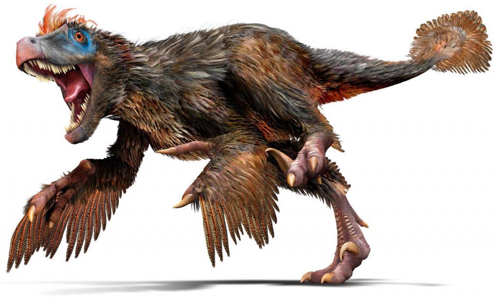 velociraptor-2.jpg