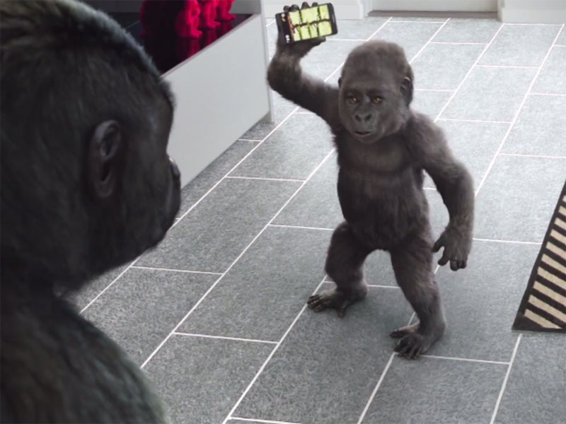 gorilla-glass.jpg
