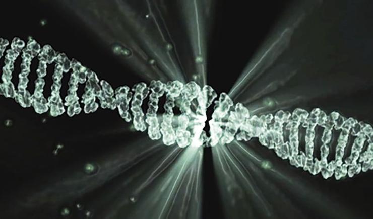 Microsoft записала песню Deep Purple на ДНК