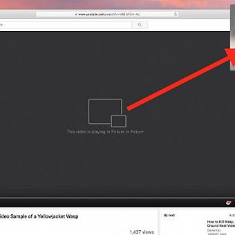 Как включить режим картинка в картинке в Google Chrome без установки расширений